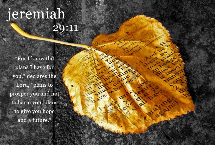 Pastor Appreciation Scriptures