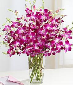 Pastor's Wife Flowers